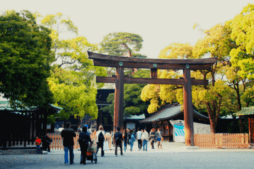 奥手男子とのデートコース:明治神宮