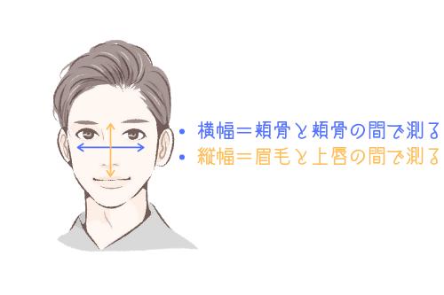 顔の横縦比の測り方