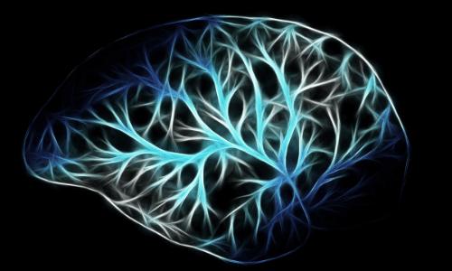 失敗を溜め込んでおける脳