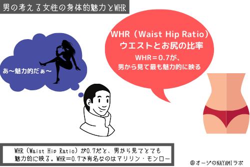 男の考える女性の身体的魅力とWHRの図解